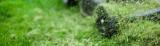 Nevýhody mulčování trávy
