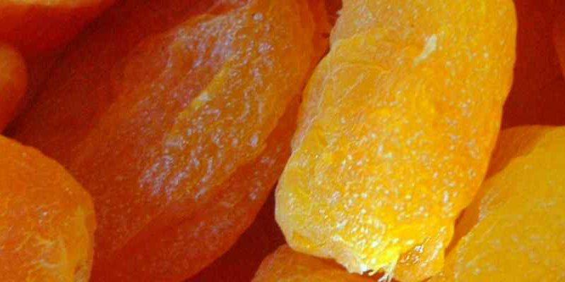 Jak vybrat sušičku ovoce a potravin